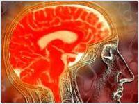 Ученые обнаружили четкие отличия в работе мозга атеистов и верующих